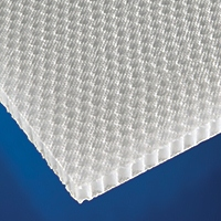 Honeycomb-PP 25mm qty 1 sheet